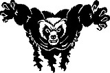 Bear, Vinyl decal sticker