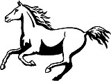 Galloping Horse, Vinyl cut decal
