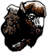 Buffalo Head, Full color decal