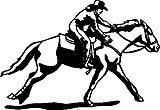 Cowgirl racing on a horse, Vinyl Cut decal