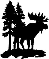 A Moose standing in the woods