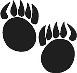Bear Paws, Vinyl decal sticker, Vinyl decal sticker