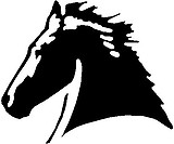 Horse Head, Vinyl cut decal sticker