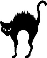 Scary Cat, Vinyl cut decal