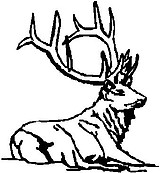 Elk, Beding down, Vinyl cut decal