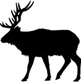 Elk, Vinyl cut decal
