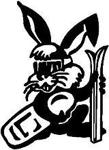 Bunny With Skis and snow board, Vinyl cut decal
