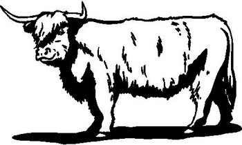 Bull, Viynl cut decal